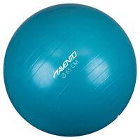 Avento Fitness/Gym Ball Dia. 65 cm Blue