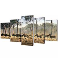 Zidne slike na platnu s zebrama 100 x 50 cm