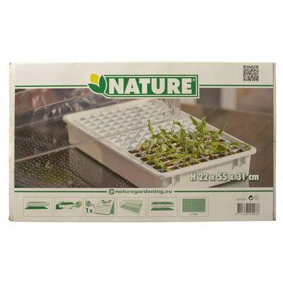 Nature set propagatora 55 x 31 x 22 cm 6020203