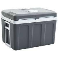 vidaXL Prijenosni termoelektrični hladnjak 45 L 12 V 230 V A++