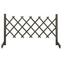 vidaXL Vrtna rešetkasta ograda siva 120 x 60 cm od masivne jelovine