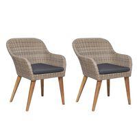 vidaXL Vrtne stolice s jastucima od poliratana 2 kom smeđe